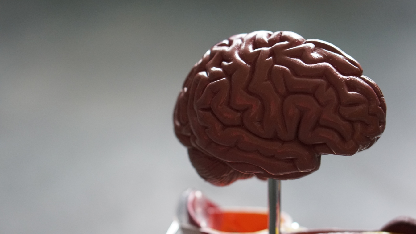 大数据:抗击创伤性脑损伤