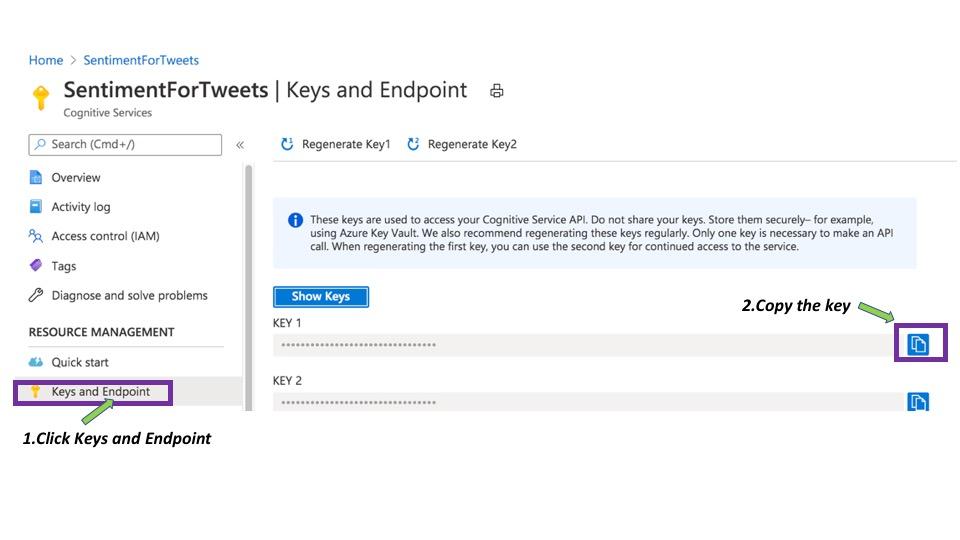 Copying API key